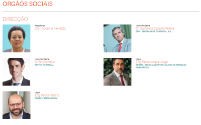 Our General Manager Pedro Martins was elected Director of ALER – Lusophone Renewable Energy Association